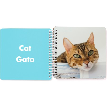 Bilingual Board Book for Kids, Spanish Cat