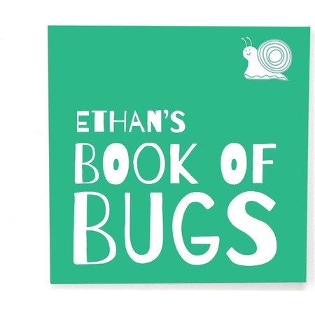 Custom Itty Bitty Book of Bugs, Cover
