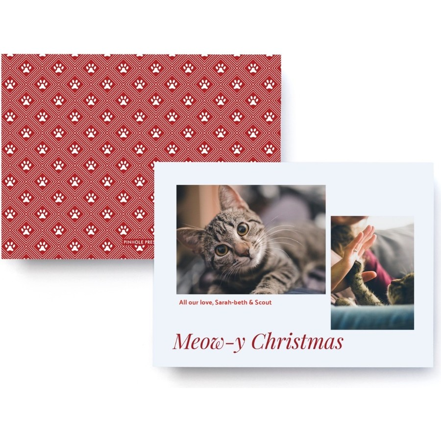 Cat Holiday Photo Card