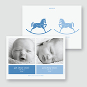 Rocking Unicorns Twin Boys Birth Announcement